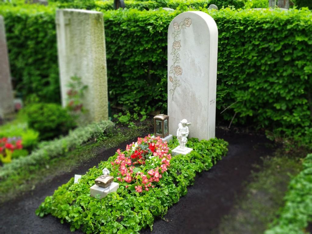 Dauerbepflanzung Pflanzen-Auswahl Grabpflege-Brumm